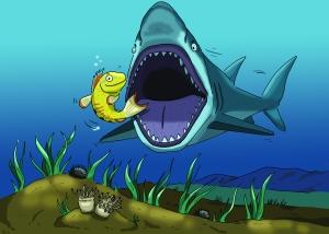 Il·lustració peixet Albert